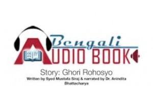 audio book2