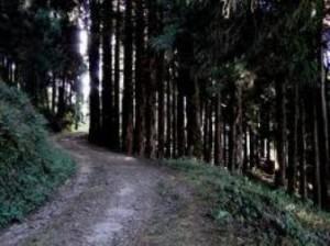 chatakpur4